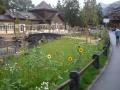 Schweizerhof 17_02